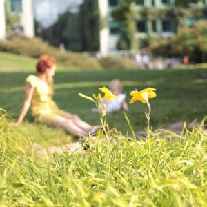 Chowamy si za kwiatkiem nie ma Nas instababy instakids igkidshellip